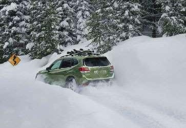 Истинный путешественник - Subaru Forester
