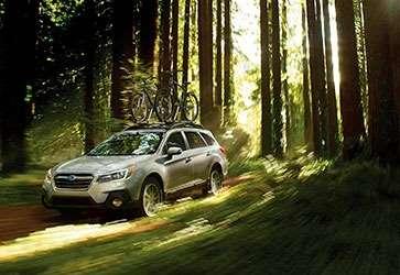 Шляхетна сила - Subaru Outback