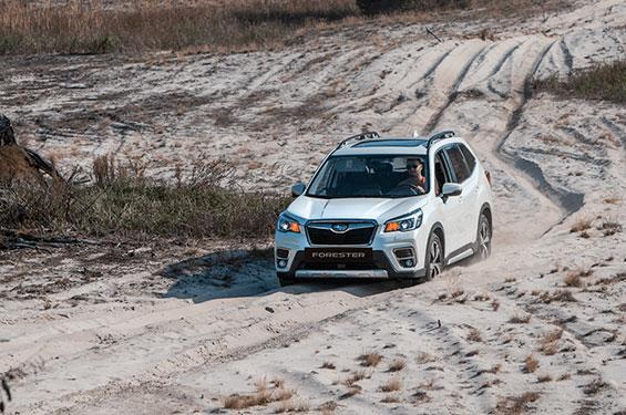 Subaru Forester - фото 1