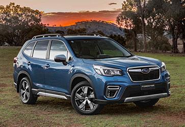 Істинний мандрівник - Subaru Forester